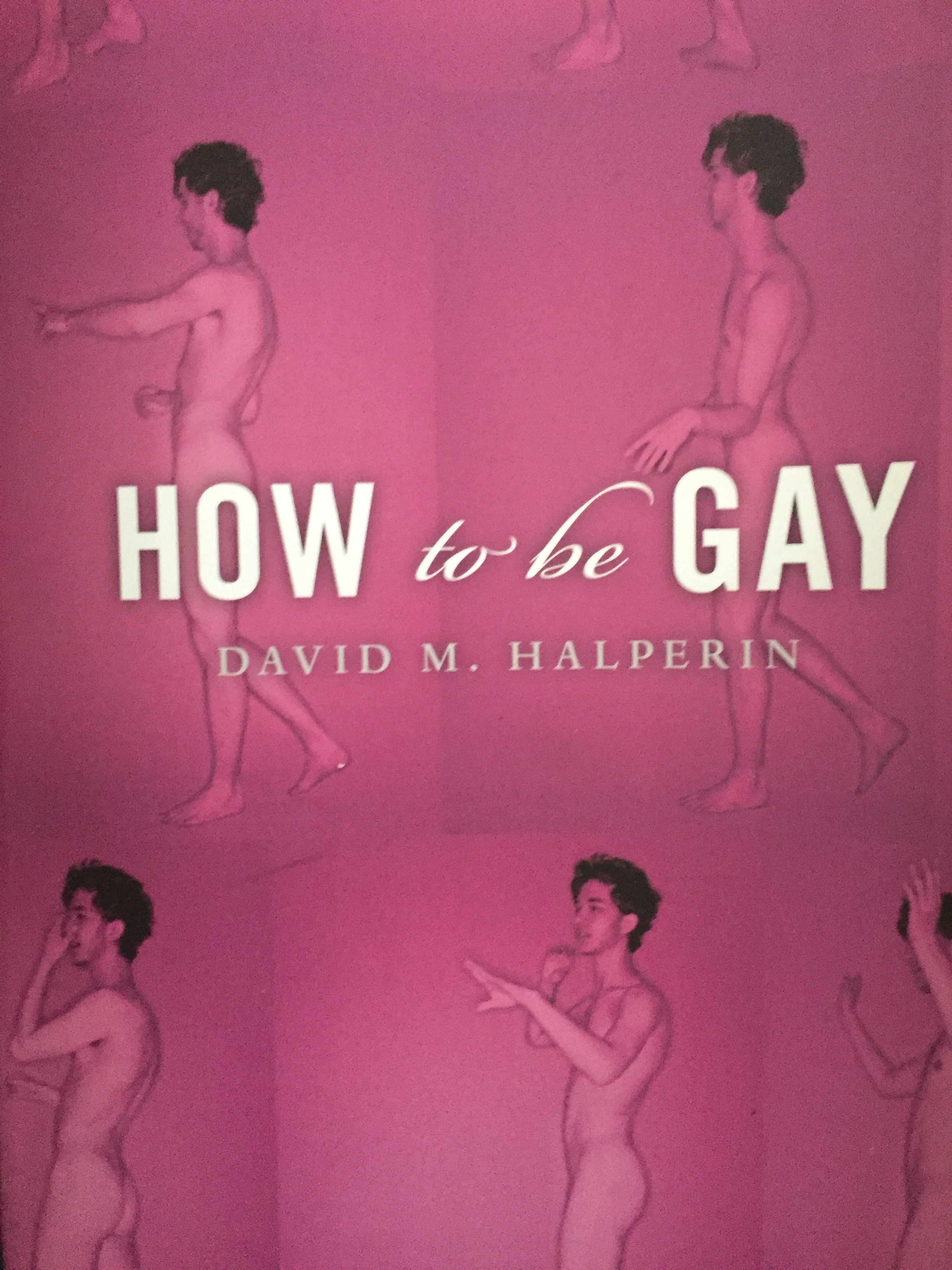 "Lectura en cartel del libro "" How to be gay """