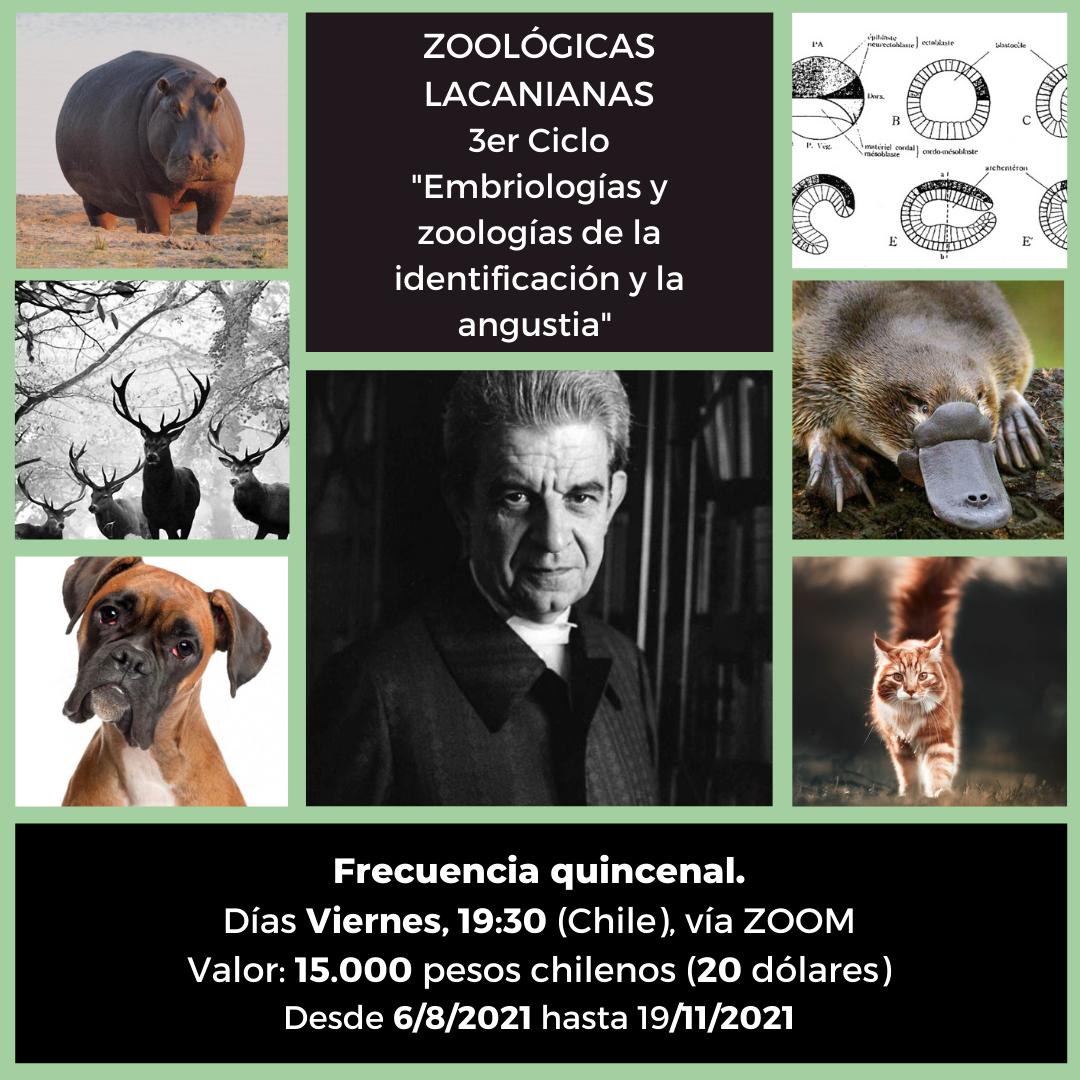 Zoológicas lacanianas, 3er ciclo. Embriologías y zoologías de la identificación y la angustia